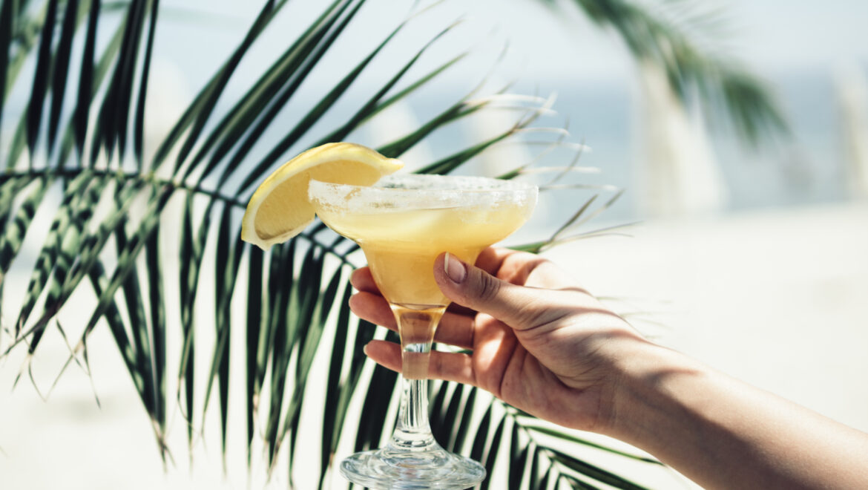 Xantippe il cocktail bisbetico